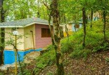 کلبه جنگلی دو تخته