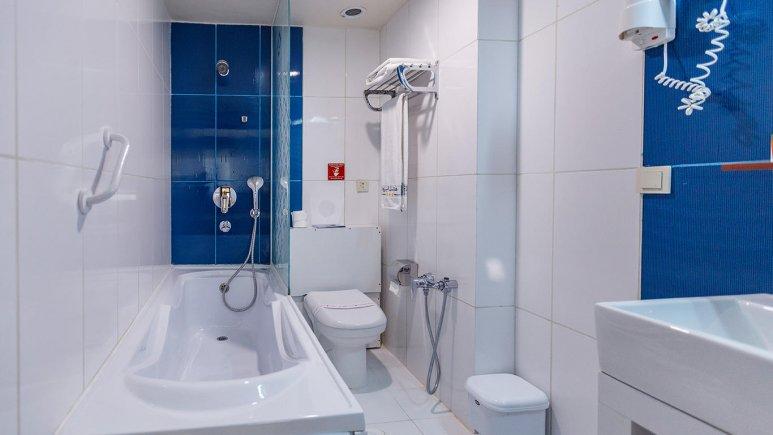 هتل الیزه شیراز سرویس بهداشتی