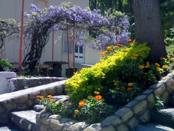 هتل فجر آبشار لاهیجان فضای بیرونی هتل 2